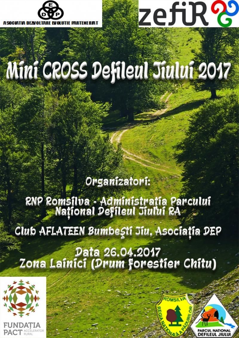 MiniCROSS 2017